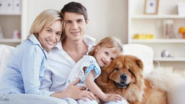 Wills & Trusts dog-young-family Direct Wills Wooburn Green